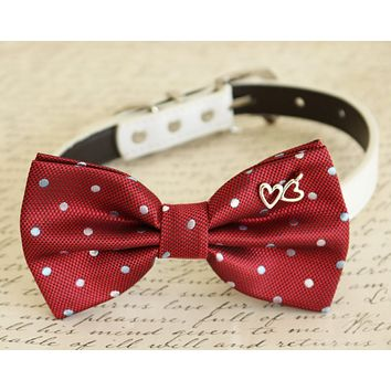 Red Bow tie attached to dog collar, heart, Dog birthday, wedding