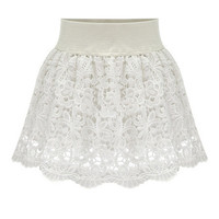 Lace Embroidery Mini Skater Skirt