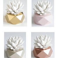Succulent Sculpture in Copper, Blush Pink, Champagne, or Gold Planter