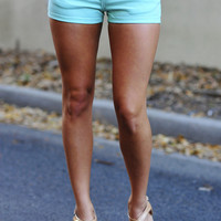 Beauty And The Beach Shorts: Mint | Hope's