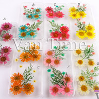 Pressed Flower case, Daisy, sunflower, iPhone 5 case, iPhone 4 case, iPhone 4s case, iPhone 5s case iPhone 5c case Galaxy S4 S5 Note 3, 088