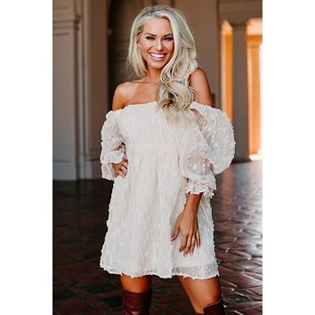 Clementine Embroidered Mesh Babydoll Dress (Ivory)