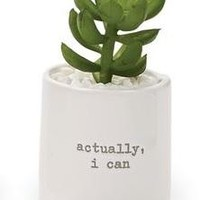 'I Can' Potted Succulent By Mudpie