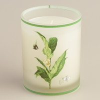Magnolia Lily Botanical Boxed Candle - World Market