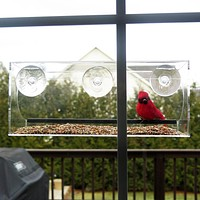 Evelots Window Bird Feeder With Drain Holes and 3 Suction Cups/Large/Clear-Set/2