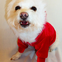 RockinDogs Santa Hoodie for Dogs