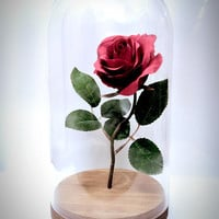 Real enchanted rose/Beauty and the beast rose/disney/fairytale/romantic/roses/glass and rose/rose in a bottle/glass dome/wedding/engagement