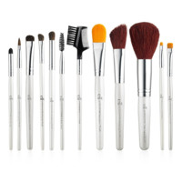 Professional Complete Set of 12 Brushes