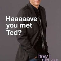 (11x17) How I Met Your Mother - Ted TV Poster