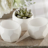 Modern Geometric White Planter (Set of 4)