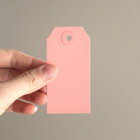 Blank Gift Tags - Mini - set of 25 in Blush Pink with Blush Pink reinforcement ring