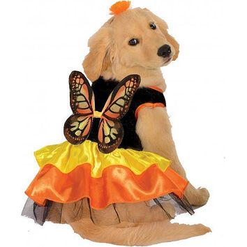 Monarch Butterfly Dog Pet Costume, Large
