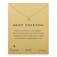 best friends wishbone necklace, gold dipped