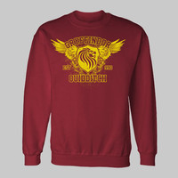 GRYFFINDOR QUIDDITCH youth or adult size kids funny Sweatshirt sweat shirt all sizes