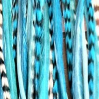 """Range From 4""""-6"""" Blue with Turquoise with Best Quality Salon Feathers for Hair Extension 5 Feathers"""