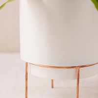 "Adelphi 6"" Planter 