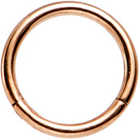 """16 Gauge 5/16"""" Rose Gold PVD Stainless Steel Hinged Segment Ring 