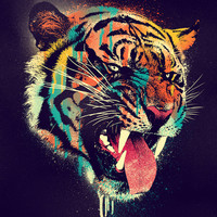 FEROCIOUS TIGER Art Print by Dzeri29
