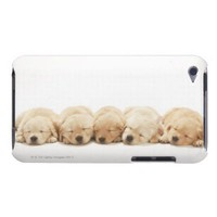 The puppies of the golden retriever iPod Case-Mate cases from Zazzle.com