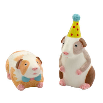 Pets Party Salt and Pepper Set   Gifts under £20   CathKidston