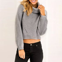 Turtleneck Knitted Long Sleeve Sweater