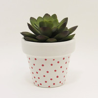 Terracotta Pot, Succulent Planter, Cute Planter, Small Pot, White Planter, Air Plant Holder, Indoor Planter, Polka Dot Planter, Pink