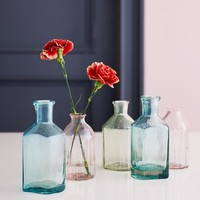 Collected Bottle Vases