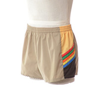 Vintage 60s 70s Laguna Rainbow Swim Trunks 1960s 1970s Retro Swimwear Swim Suit Hipster Cabana Beach Shorts / Mens Large / 36