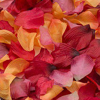 Fall Petals for Weddings (approx 250)