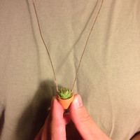Succulent Planter Necklace | Wearable Live Plant | Small Succulent Included