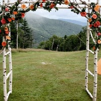 Chuppa / wedding arch / Arbor  /  Birch Poles