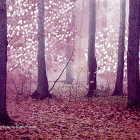 "Nature Photography, Surreal Sparkling Autumn Trees, Fantasy Nature Forest Trees, Dreamy Pink Fantasy Woodlands, Ethereal Pink Trees 9"" x 12"""