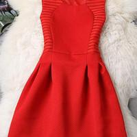 Red Sleeveless A-Line Mini Dress
