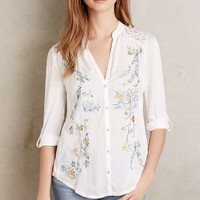 Tiny Embroidered Kalei Buttondown in Ivory Size: