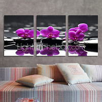 Canvas Set of 3 Floral Purple Lilac off the Shore Stretched Canvas Print Ready to Hang - USD $ 46.74