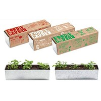 Foodie Garden Kit (Basil, Tomato, Pepper)