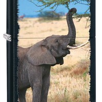 Zippo Safari Elephant Black Matte Background Windproof Lighter