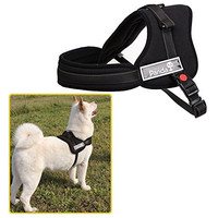 Ecoastal Dog Body Harness Padded Extra Chest Straps Heavy Duty with Handle Comfortable for Samoyed, Husky Large Dogs