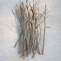 Tree Branches, Sticks, Table Decor, Wedding Decor, Decorative Branches, Paint Your Own, Art Supplies, Craft Supplies, Wedding Centerpiece