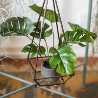 Artificial Turtle Leaf Bonsai Small Potted Plant