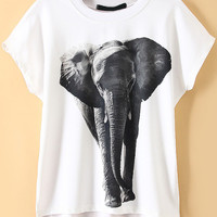 White Dip Hem Animal Print T-Shirt