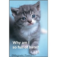 """Why Am I So Full Of Hate Cat Magnet 