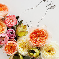 Fox and Flower No. 9889