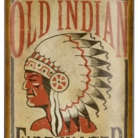 Old Indian Fire Water Flask