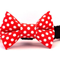 Red and White Polka Dot Bow Tie Collar, Dog Collar, Dog Bow Tie, Dog Accessories, Bow Tie Collar, Dog Bow Tie, Minnie Mouse Collar