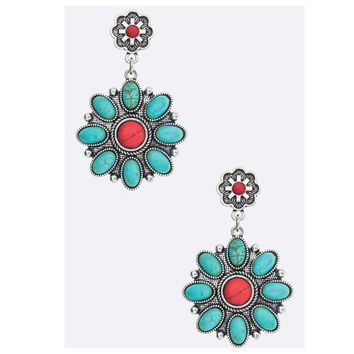 Sale! Western Iconic Mixed Stone Earrings