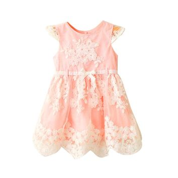Girls dresses Toddler Kids Baby Girls Clothes Embroidery Lace Party Wedding Princess Dresses drop shipping