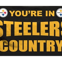 Pittsburgh Steelers 3'x5' Country Design Flag