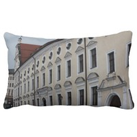 Amberg - Architecture perspective Pillows