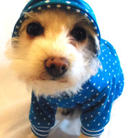 RockinDogs Turquoise and White Polka Dot and Stripes Dog Hoodie
